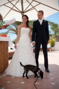 pets at wedding ceremonies